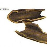 Kleine Gewürzfibel - Angostura