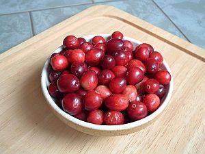 Moosbeeren – ausgewählte Rezepte der russischen Küche