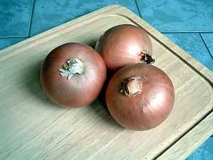 Die Zwiebel – in der Küche nahezu unentbehrlich